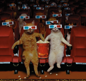 cats and dogs. movies